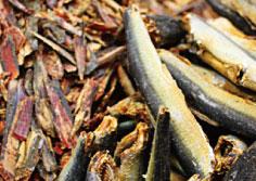 鹿児島枕崎産本鰹節、高知土佐産宗田節に屋久島産のごま鯖節と九十九里産煮干し